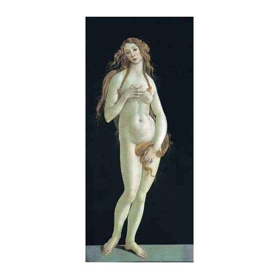 pinturas do retrato - Quadro -Venus-