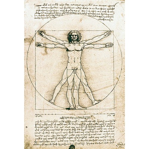 Tableau -Homme de Vitruve-
