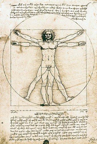 tableaux-cartes-du-monde-dessins - Tableau -Homme de Vitruve- - Vinci, Leonardo da