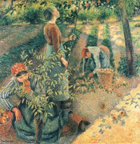 tableaux-de-personnages - Tableau -Cueilleurs de pommes- - Pissarro, Camille