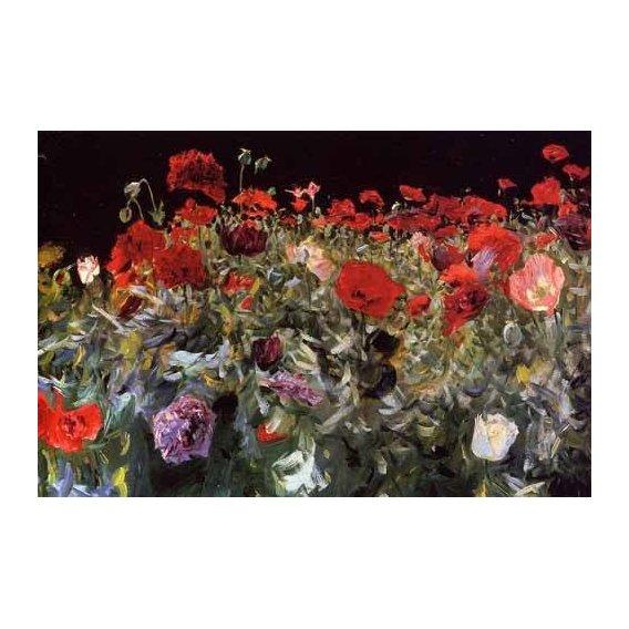 imagens de flores - Quadro -Amapolas-