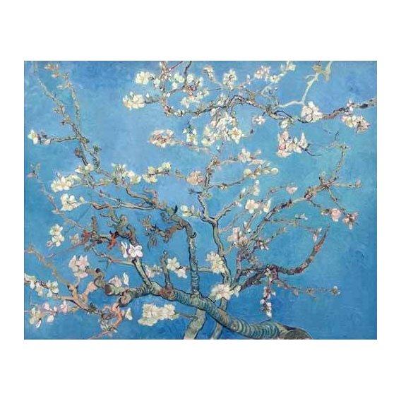 imagens de flores - Quadro -El almendro-