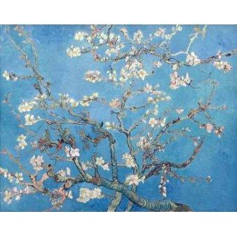 - Tableau -Amandier en fleurs- - Van Gogh, Vincent