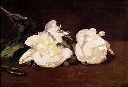 tableaux-de-fleurs - Tableau -Branche de pivoines blanches et élagueur- - Manet, Eduard