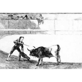 Tableaux cartes du monde, dessins - Tableau -Tauromaquia num.30: Pedro Romero matando a toro parado- - Goya y Lucientes, Francisco de