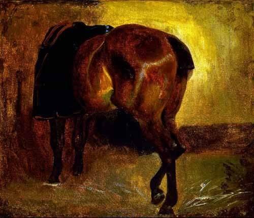 tableaux-de-faune - Tableau -Estudio de un caballo- - Gericault, Theodore