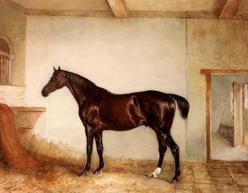 tableaux-de-faune - Tableau -A Bay Hunter in a Loose Box- - Ferneley I, John