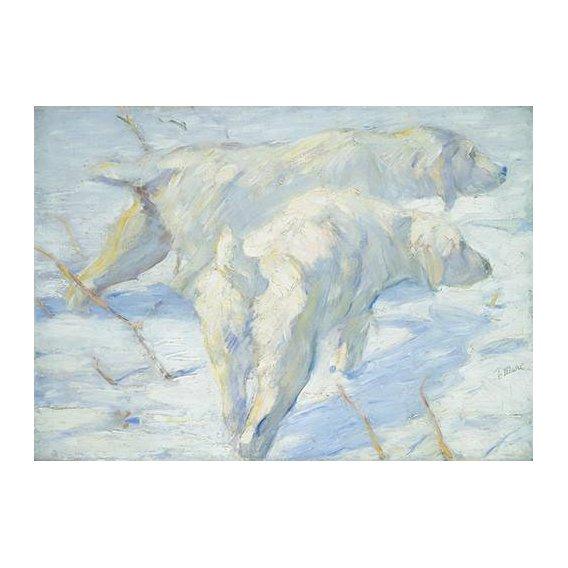 fotos de fauna - Quadro -Perros pastores siberianos-