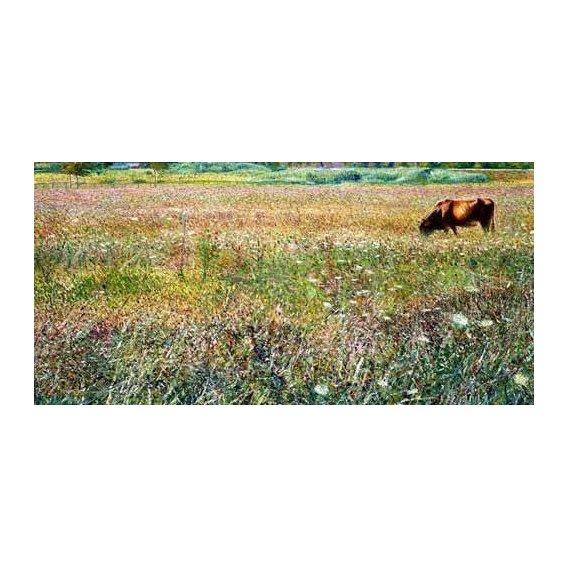 pinturas de paisagens - Quadro -Roman countryside-