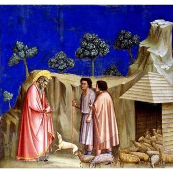 Tableaux religieuses - Tableau -Joachim retires to the sheepfold- - Giotto, Bondone di