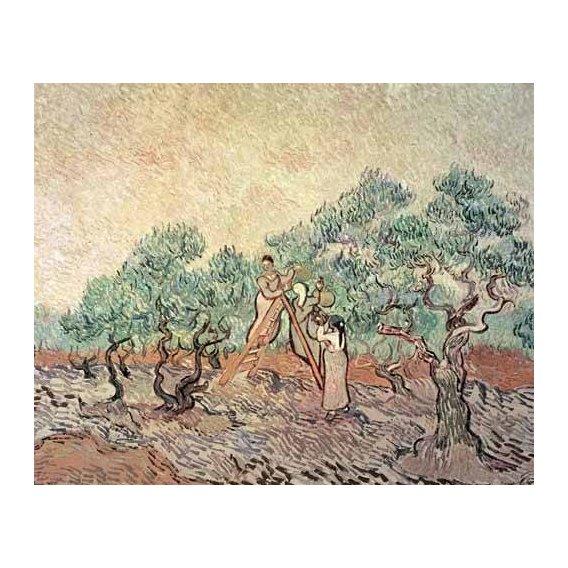 pinturas de paisagens - Quadro -El Olivar-